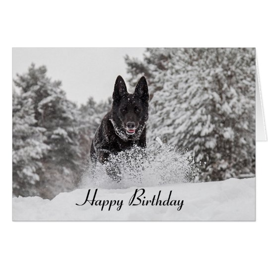 Birthday Card German Shepherd Dog in snow
