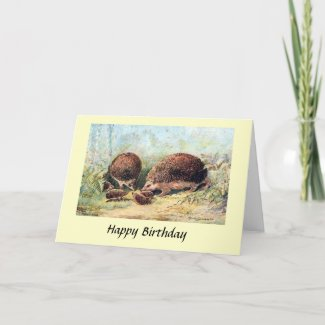 Birthday Card - Hedgehogs