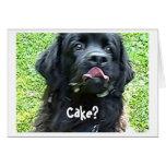 Birthday Card Newfoundland dog humor
