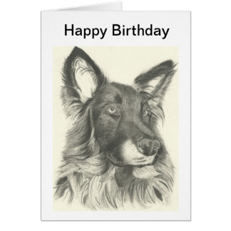 Birthday Card Pencil Drawing of a German Shepherd