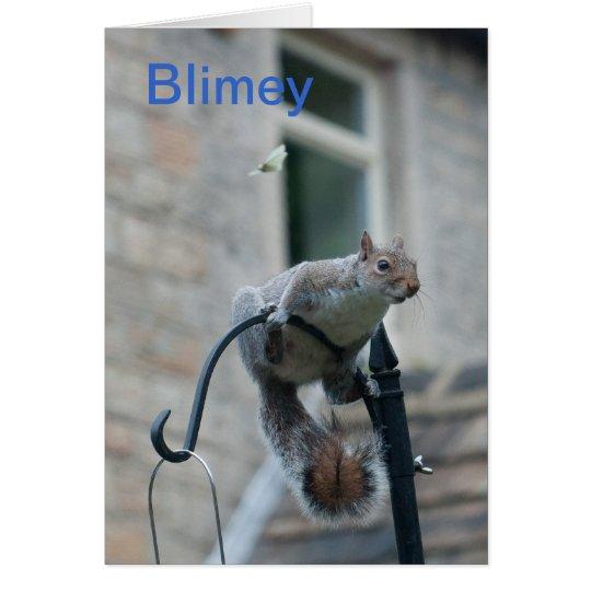 Birthday Card: Squirrel & Butterfly Card