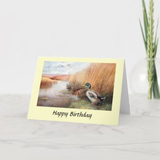 Birthday Card - Wild Duck
