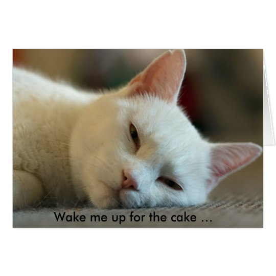Birthday Card with Cat: Wake me up for