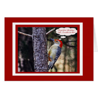 Birthday Card With Funny Red Bellied Woodpecker
