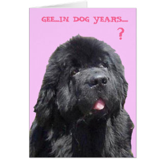Birthday Card with Newfy