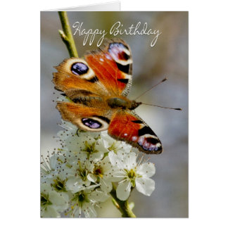 Birthday Card With Peacock Butterfly