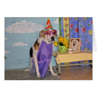 Birthday card with photo of dog dressed up