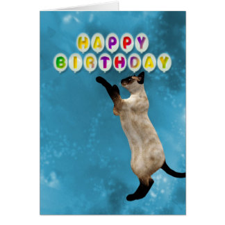 Birthday card with siamese cats