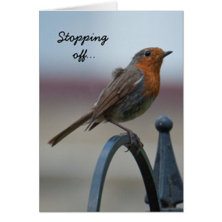 Birthday Card: Young British Robin Card