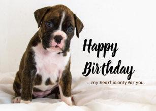 Boxer Puppy Dog Birthday Cards