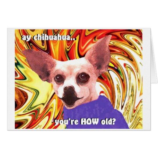 birthday chihuahua card