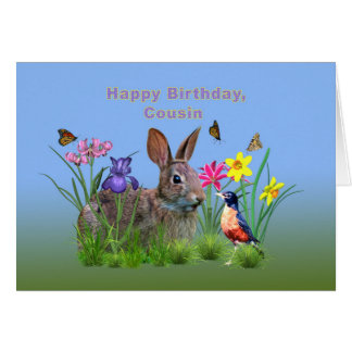 Birthday, Cousin, Bunny, Robin Greeting Card