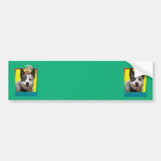 Birthday Cupcake - Australian Cattle Dog Bumper Stickers