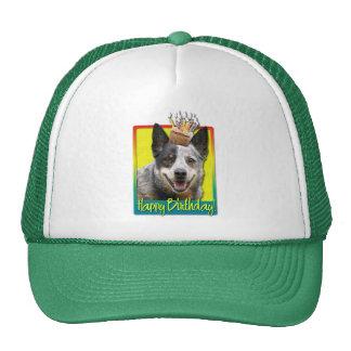 Birthday Cupcake - Australian Cattle Dog Mesh Hats