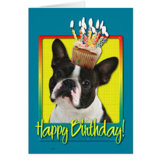 Birthday Cupcake - Boston Terrier Card
