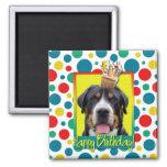 Birthday Cupcake - Greater Swiss Mountain Dog