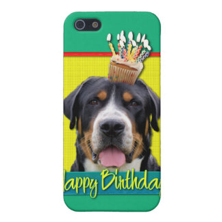 Birthday Cupcake - Greater Swiss Mountain Dog iPhone 5 Covers