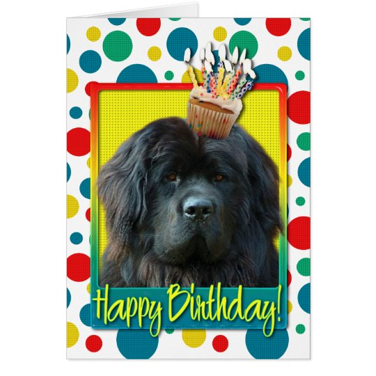 Birthday Cupcake - Newfoundland Card