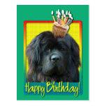 Birthday Cupcake - Newfoundland Postcard