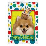 Birthday Cupcake - Pomeranian
