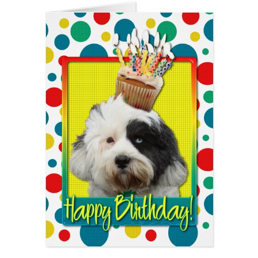 Birthday Cupcake - Tibetan Terrier Greeting Cards