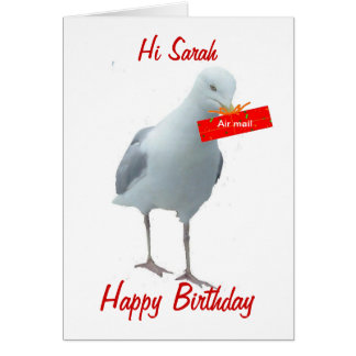 Birthday Day Card Seagull