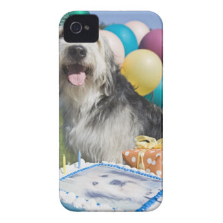 Birthday dog iPhone 4 cases