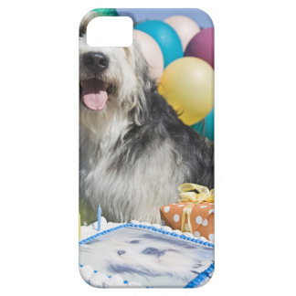 Birthday dog iPhone 5 cover