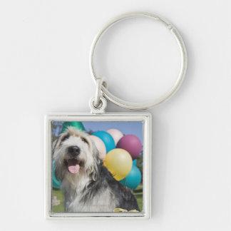 Birthday dog key ring