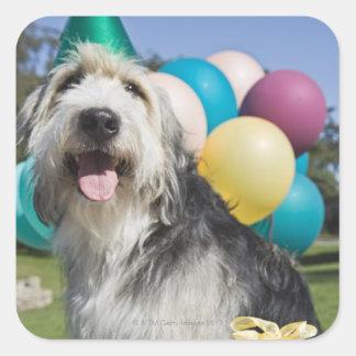 Birthday dog square sticker