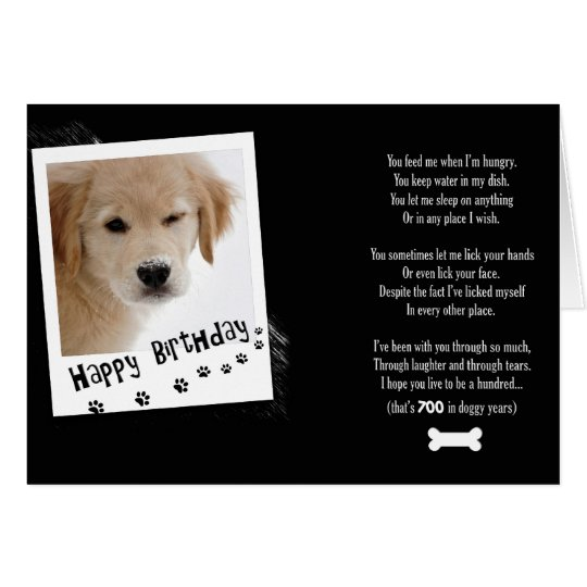 Birthday Doggy Humour Card