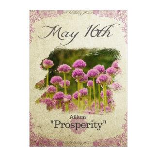 "Birthday flowers on May 16th ""Allium"" Acrylic Wall Art"