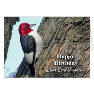 Birthday for Goddaughter, Red-headed Woodpecker Card