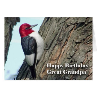 Birthday for Great Grandpa Red-headed Woodpecker Greeting Card