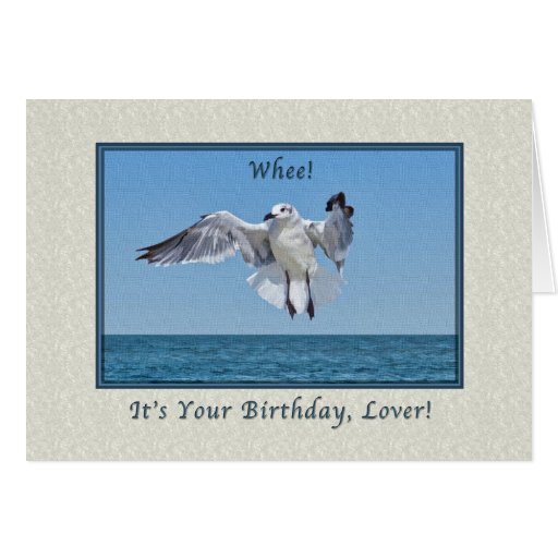 Birthday for Lover with Laughing Gull Greeting Card