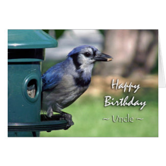 Birthday for Uncle, Blue Jay at Bird Feeder Greeting Card