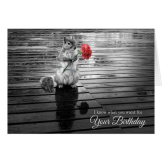 Birthday for Wildlife Lover Cute Squirrel Card