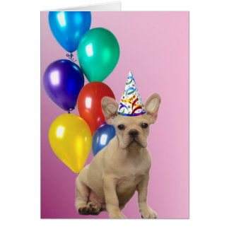 Birthday French Bulldog Card