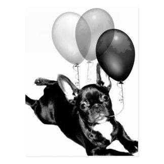 Birthday French Bulldog Postcard