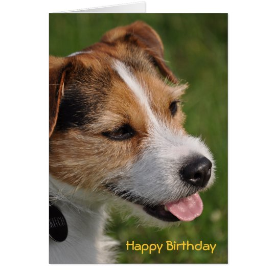 Birthday from the Dog Card