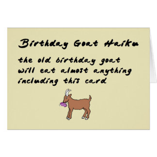 Birthday Goat Haiku - a funny happy birthday poem Card
