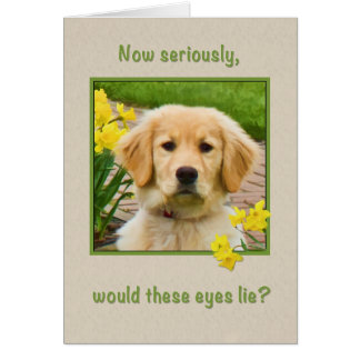 Birthday, Golden Retriever Dog, Daffodils Card