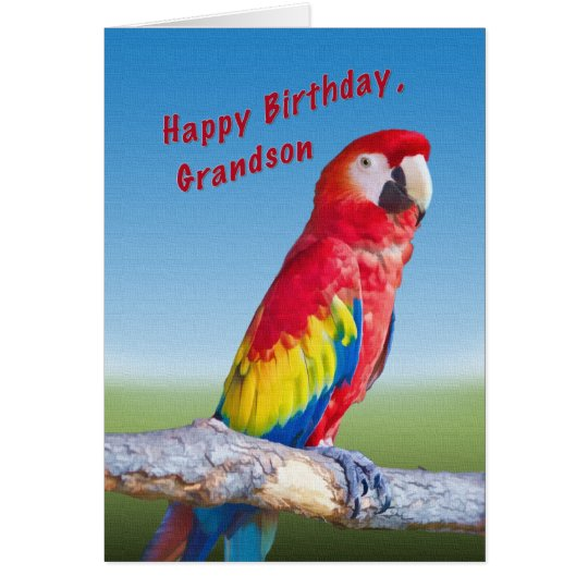 Birthday, Grandson, Macaw Parrot Card