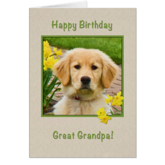 Birthday, Great Grandpa, Golden Retriever Dog Card