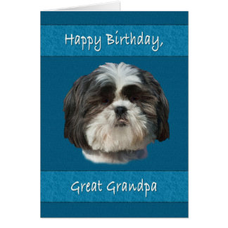 Birthday,  Great Grandpa, Shih Tzu Dog Greeting Card