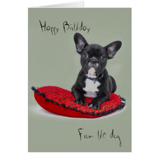 Birthday greetings from the dog card