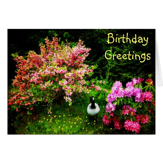 Birthday Greetings- Goose Greeting Card