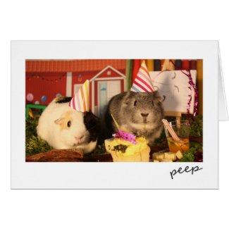 Birthday Guinea Pigs Card