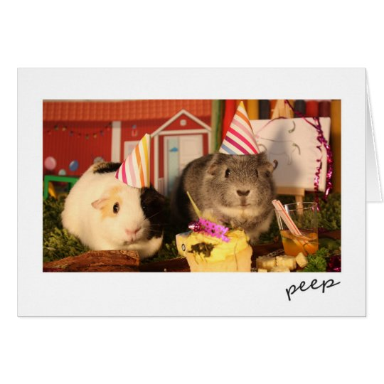 Birthday Guinea Pigs Card