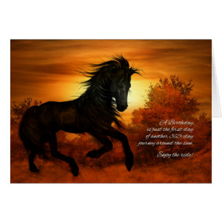 Birthday Horse in the Sunset - Funny Greeting Card